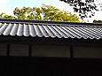 神社社務所の屋根修理